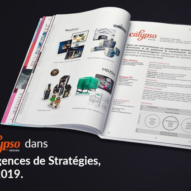 EDITION DU GUIDE STRATEGIES 2019