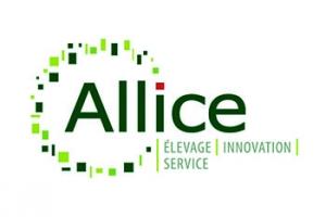 Ex UNCEIA - Allice