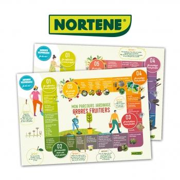 Nortène